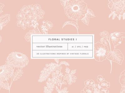 Floral Studies I Vector Illustrations