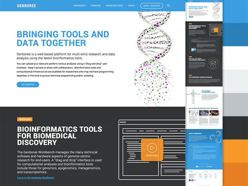 Genboree Bioinformatics marketing science color palette blues oranges roboto stock imagery
