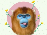 No Monkey Business cute animal minimal yellow blue flower painted procreate goldensnubnosedmonkey monkey