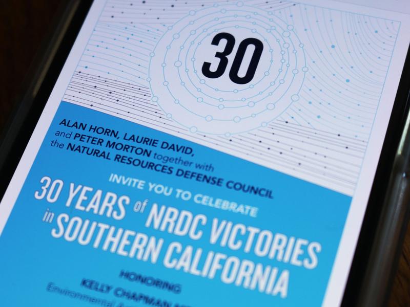 NRDC Event Design environmental illustration branding branding design event branding nonprofit