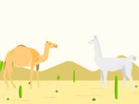 Camel & llama dating