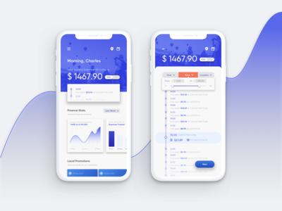 Travel Finance App