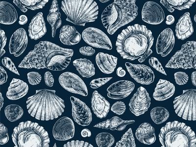 Shells sea shell fish pattern vector line ink stock illustration xara