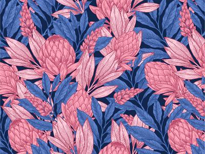 Wild Protea pattern print leaf xara line vector pattern jungle wild floral protea