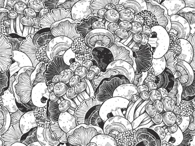 mushrooms xara vector various truffle pattern mushrooms line ink illustration
