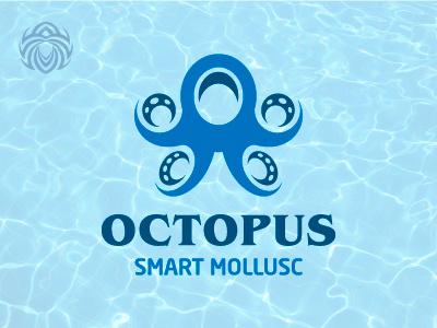 Octopus Clever Clam symbol animal branding design beautiful buy logo logotype identity brand logo sea ocean shellfish octopus