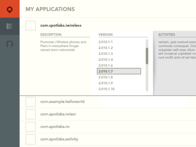 application version information