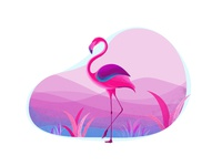 Color Series _flamingo