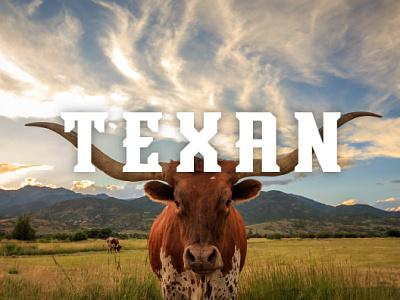 Texan texas graphic design font typography type sports logo sports font
