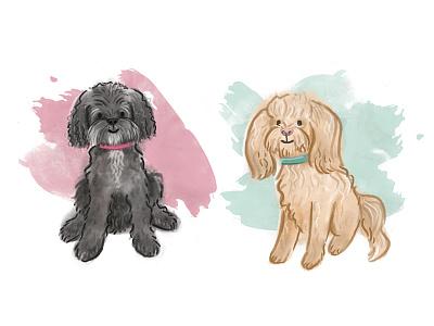 Dog Portrait - Ellie and Jackie cockapoo custom cute photoshop digital illustration dogs portrait