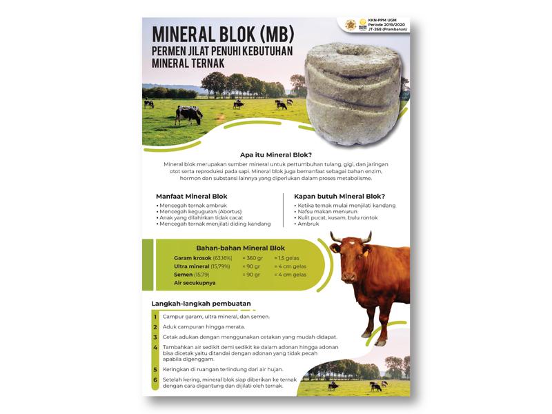 Mineral Blok KKN (Infographic) ugm kuliah kerja nyata kkn poster kkn design infographic indonesia milk sapi mineral blok poster