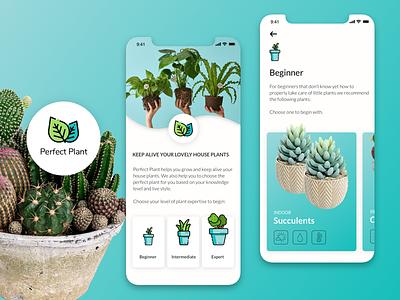 Perfect Plant App Idea mobile app design mobile ui ui uidesign planting plants application app design