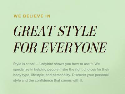 Ladybird Teaser typekit ambroise proxima nova
