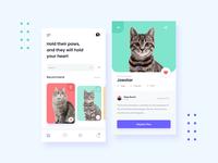 Cats Adoption App