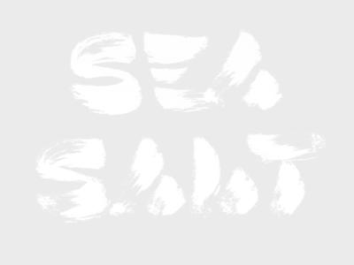 SEA SALT design type typeface typography skript lettering brush brush-lettering