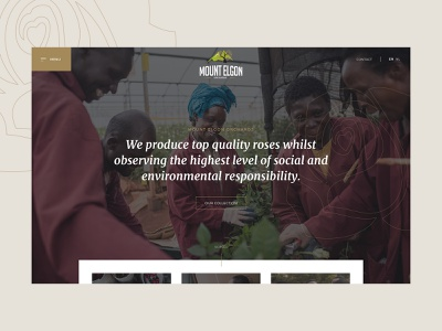 LIVE - Mount Elgon design rotterdam dennis snellenberg website design ux experience webdesign interface ui orchard avocado roses elgon mount cms kirby website code