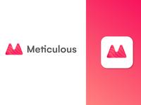 Meticulous Logo