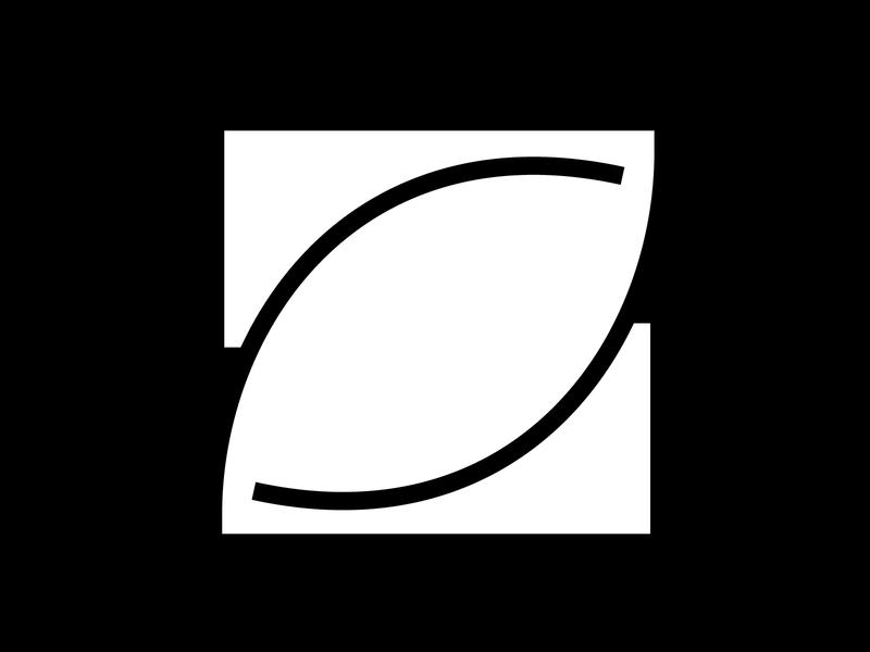 Letter z glyphs chunky bold femmetype design vector graphic design lettering 36 days of type typography adobe illustrator