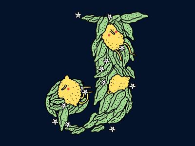 A little less serious lemon tree