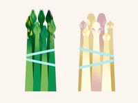 The Greenery   Asparagus