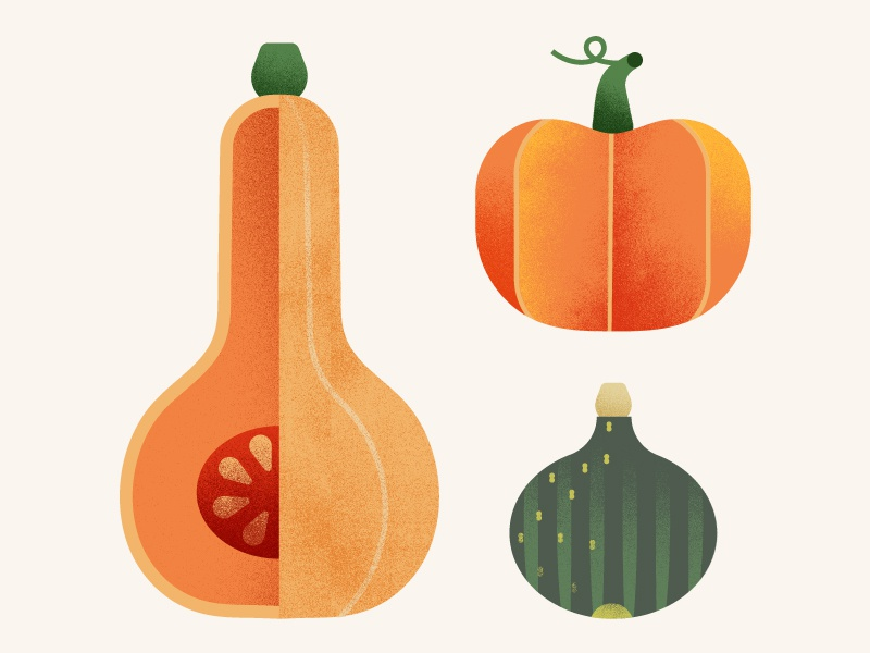The Greenery | Pumpkin & Squash texture vegetables food illustration squash pumpkin