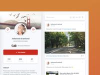 Desktop User Profile - Feed