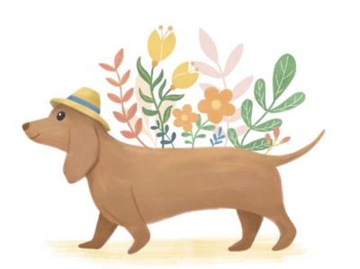 Doggie & florals photoshop digital art animal art book illustration botanical art floral dog illustration