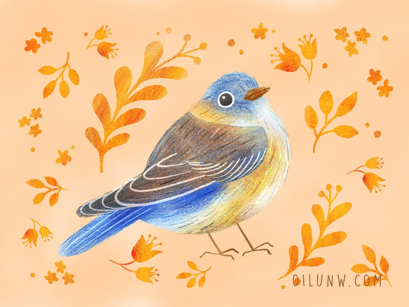 Blue bird cute bird art bird procreate illustration