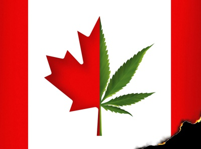 Canada's Cannabis Bubble Bursts as Legal Market Falters canada flag conceptual illustration conceptual editorial illustration editorial design procreate digital illustrator illustration cannabis marijuana