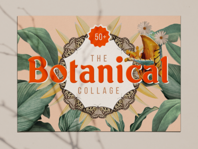 Botanical Collage Art Kit art collage print