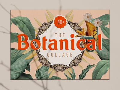 Botanical Collage Art Kit art collage print