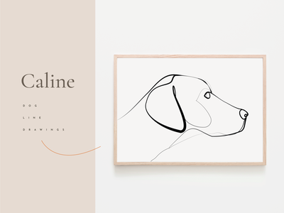 Caline - A collection of dogs illustration