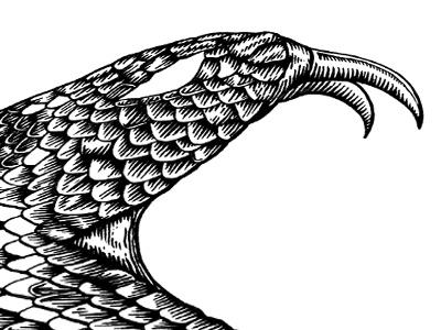 Rattlesnake  snake micron engraved woodcut gustave dore wannabe