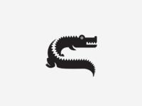 C for Crocodile