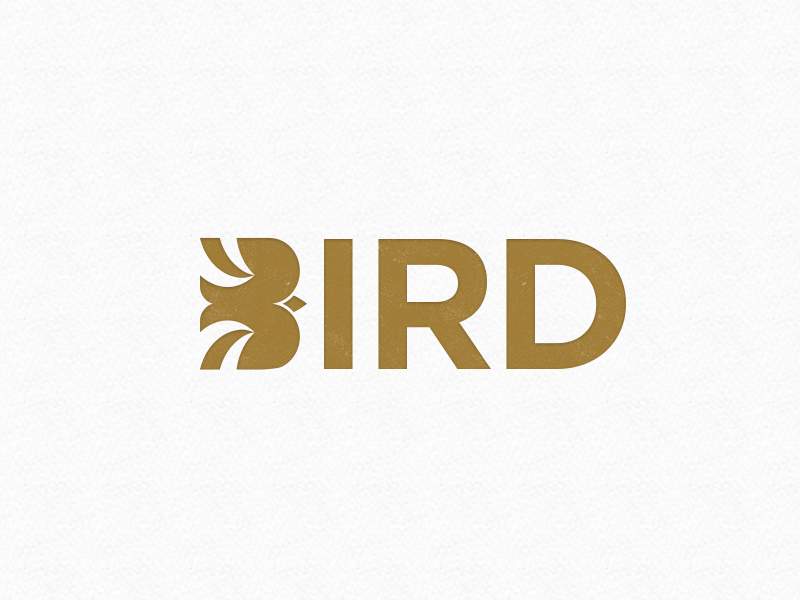 Bird Logo travel flying fly logotype bird idea clever illustration identity branding sky logo