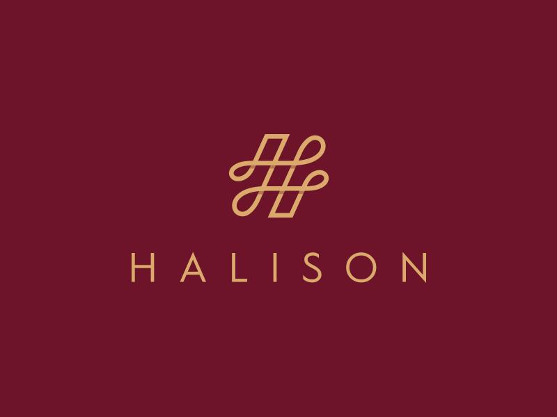 Halison Jewelry Logo Design By Aditya Chhatrala On Dribbble