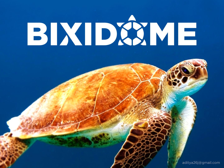 Bix drb1