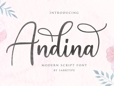 Andina logotype typography script font girly typeface packaging font awesome font