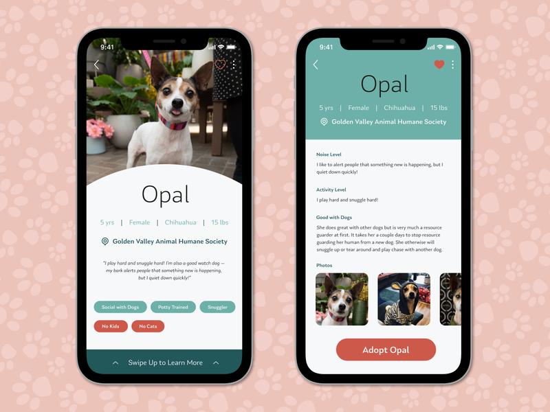 Opal Dog Profile dailyui mobile chihuahua ui user profile user foster humane society adoption adopt puppy dog