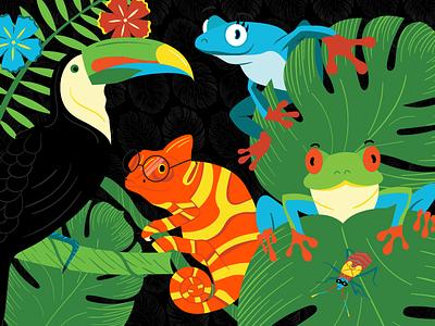 Rainforest Characters Illustrations illustration leaf rainbow tropical rainforest aphid chameleon toucan tree frog