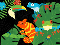Rainforest Characters Illustrations