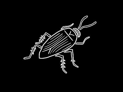 Creepy Critter cockroach minimal shaketember illustration