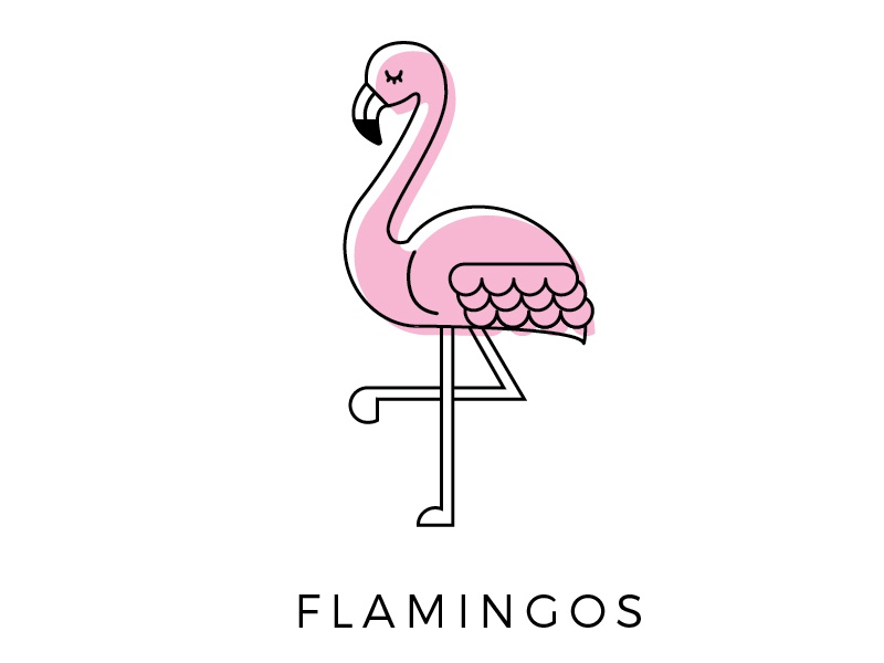 flamingo icon by courtney lesueur