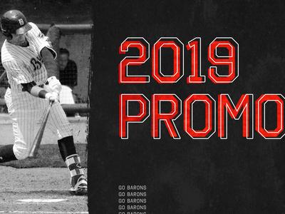 2019 Promotions Website Banner branding brushstroke halftone texture font baseball