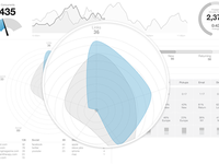 Radar Chart Wireframe