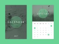 Calendar Cards 2017