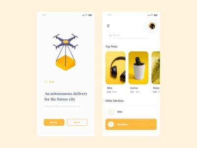 Drone Delivery App Concept