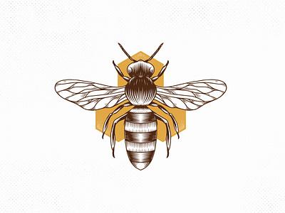 Honey Bee Vintage Vector Logo Design animal hand drawn honeycomb beehive insect bee hive bee logo wasp honey bee creative market bee vintage logo logotype vector branding creative design brand identity logo design stock logo logo template