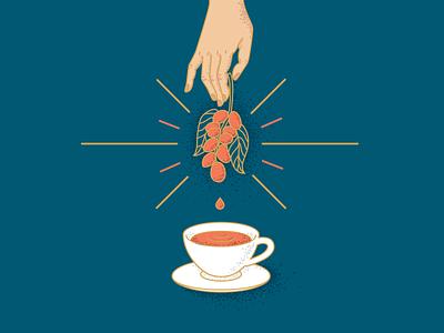 coffee coffee poster caffee branding graphic  design illustration
