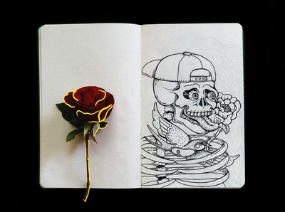 sketchbook  | . skull . 1